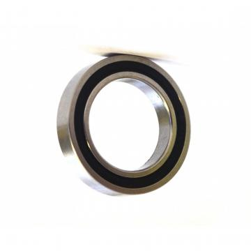 Single Row Deep Groove Ball Bearing 6204 2RS RS Zz for Automobile Tension Wheel Bearing