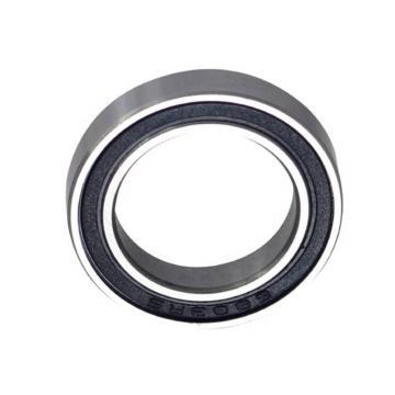 SKF/NSK/Koyo Steel Spherical Roller Bearing (22313)