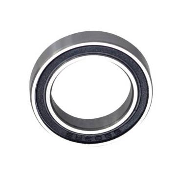Spherical Roller Bearing 24013 22213 BS2-2213 21313 22313 BS2-2313 E -2RS/Vt143 Cc E/Va405 Cc/W33 -2RS5/Vt143 Eja/Va405 Eja/Va406