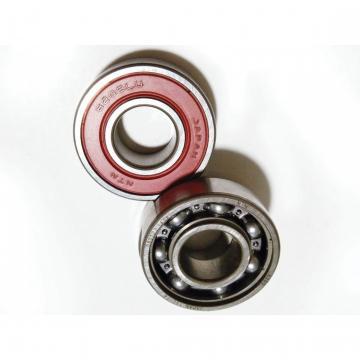 Motorcycle Bearing 6006 6302RS Koyo NTN NSK Bearing